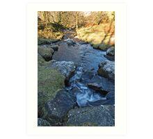 Mawddach Trail No3 Art Print