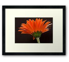 Orange Flames Framed Print