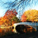 CENTRAL PARK'S BOW BRIDGE by KENDALL EUTEMEY