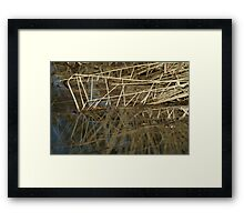 washing my troubles away Framed Print