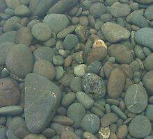 River pebbles in the Waitaki River by orkology