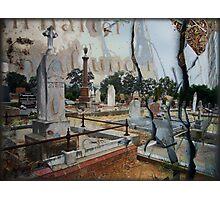 der Kirschhof, Lutheran cemetery, Birdwood Photographic Print