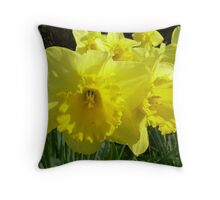 So Sunny Throw Pillow