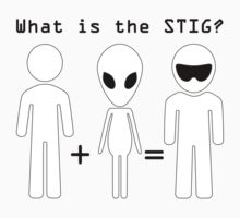 What is the STIG? by Ann Douthat