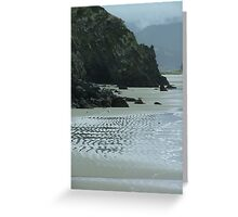 Lonely Beach north of Dunedin Greeting Card