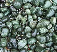 Phonolite cobbles on the beach at Purakanui by orkology