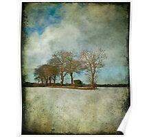 Tree-Line Poster