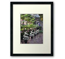 Longwood Splendor Framed Print