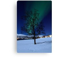 Tree & Aurora Borealis Canvas Print