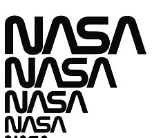 Nasa Graphics Standards Manual 1976 0006 Reproduction Art Logotype by wetdryvac