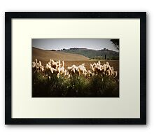 the brush Framed Print