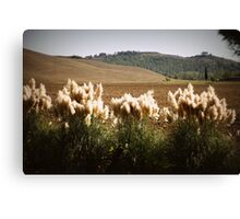 the brush Canvas Print