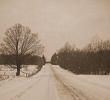 Winter in Sepia #1 by marchello