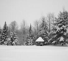 Deep Snow #3 by marchello