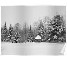 Deep Snow #3 Poster