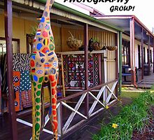 Proud to be a member of the African Art and Photography Group Banner by Antionette