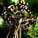 Thy faith - Thy hope by TriciaDanby