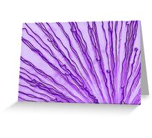 funkified fireworks Greeting Card
