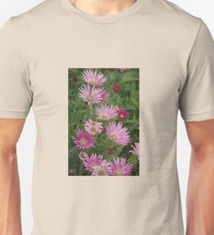 Arctotis Wine Unisex T-Shirt