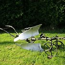 Horse Drawn Early Single Furrow Reversible Plough by Edward Denyer