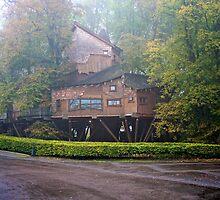 Treehouse by Iceangel