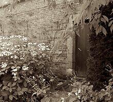 Doorway to.....? by Iceangel