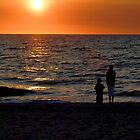 Captiva Island Florida by ggpalms