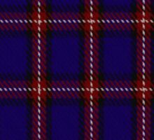 00434 Bacon Blue Tartan Sticker
