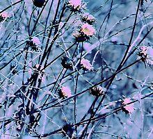 Botanical Abstract in Pastel V by Igor Shrayer