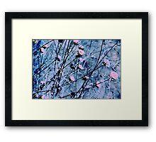Botanical Abstract in Pastel V Framed Print