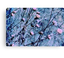 Botanical Abstract in Pastel V Canvas Print
