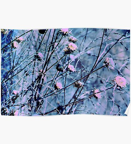 Botanical Abstract in Pastel V Poster
