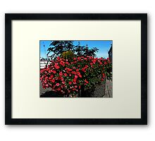 What is the Rush 8 Framed Print