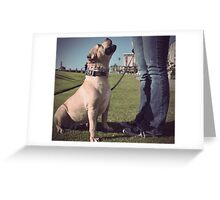 """Gigi, sit.  Good girl."" Greeting Card"