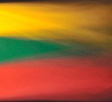 Viva Lithuania! by Kasia Nowak