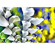 The Joy of Spring! Photographic Print