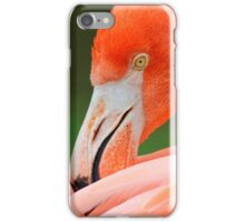 Fabulous Flamingo iPhone Case/Skin