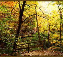 Autumn Dreamscape by DALucas
