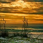 Sunset on the Gulf by Phillip M. Burrow