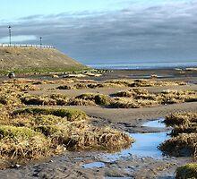 Fairhaven Beach. by Lilian Marshall