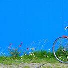 Berlin - Poppies on blue by Jean-Luc Rollier