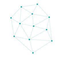 The Web.  by Bromeosin