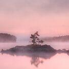 Tiny Island by Jason Vickers