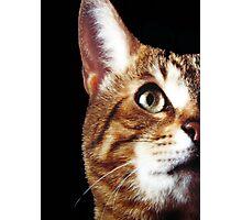 Look Into My Eyez!!! © Photographic Print