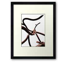 Abstract Roots Sculpture Photograph Framed Print