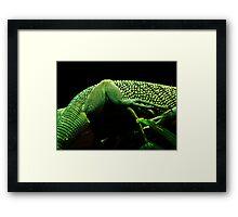 Lizard Skin Framed Print