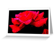 Raw Rose Greeting Card