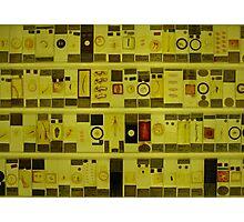 Micrarium - microbiology print Photographic Print