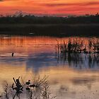 Sunset at Strumpshaw by Sue Purveur