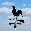The Weather Vane by barnsis